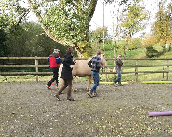 Melanie Wittockx - Coach: Therapie met paarden - Coaching met paarden