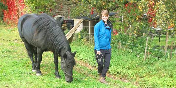 Melanie Wittockx - Coach: Therapie met paarden - Individuele coaching met paarden