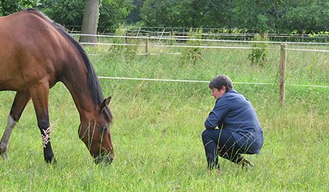 Melanie Wittockx - Therapeutisch werken met paarden