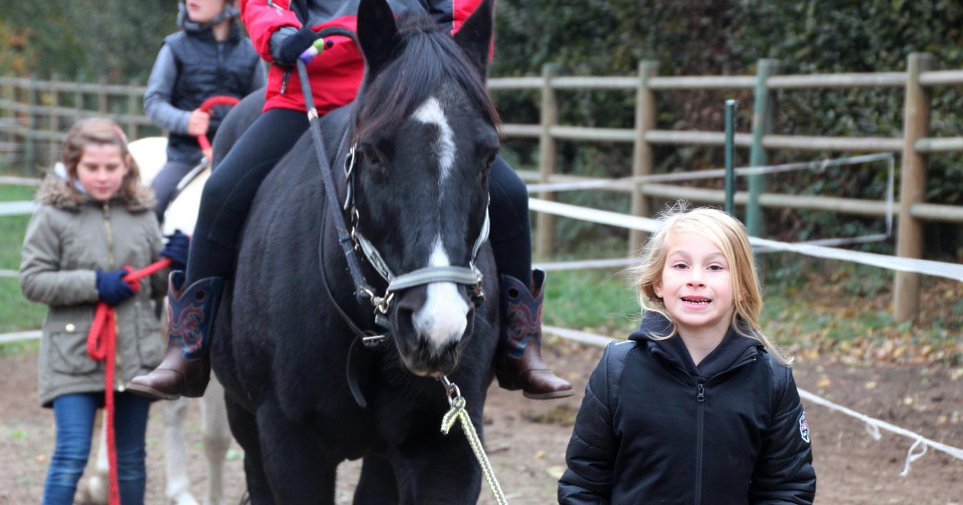 </br>Paarden 2-daagse